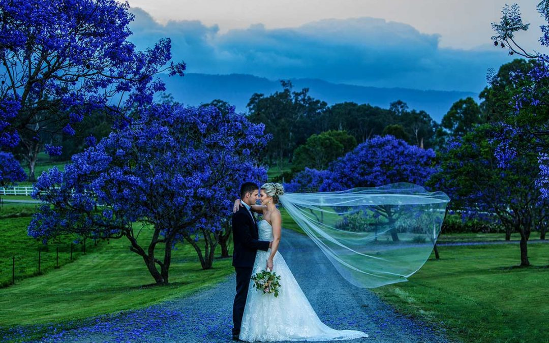 Weddings Albert River Wines